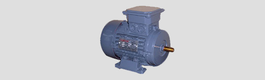 Three Phase Motors Manufacturer in Delhi, India, Three Phase Motors ...